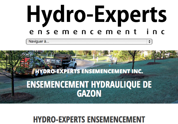 project creation and optimized website design and performance for lawn hydroseeding company in Quebec